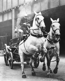 LFB horse drawn steamer at modern LFB review